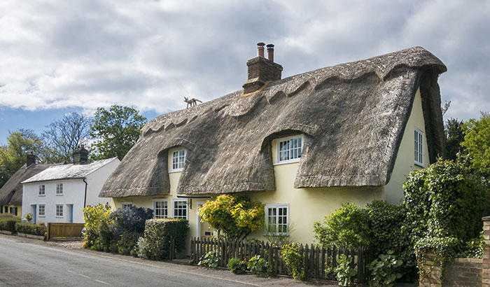What-Maintenance-Does-a-Thatched-Roof-Need