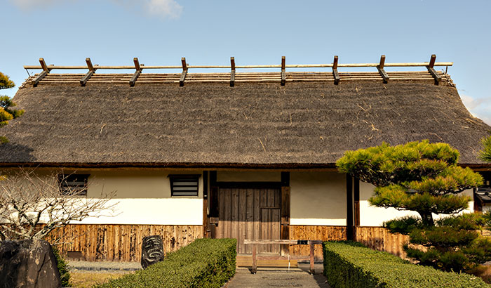 What Maintenance Does a Thatched Roof Need?